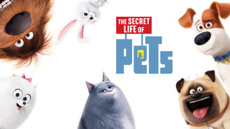 Netflix box art for The Secret Life of Pets