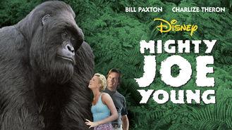 Netflix box art for Mighty Joe Young
