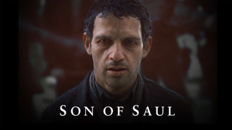 Netflix box art for Son of Saul