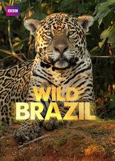Wild Brazil