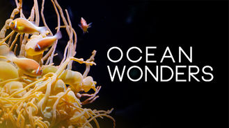 Netflix box art for Ocean Wonders