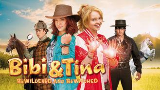 Netflix box art for Bibi & Tina II