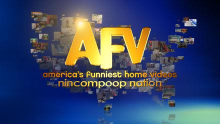 AFV Kids: Nincompoop Nation