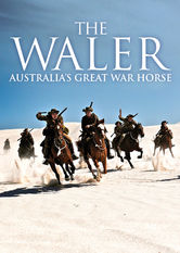 The Waler: Australia's Great War Horse