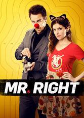 Mr. Right Netflix KR (South Korea)