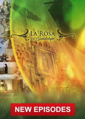 La Rosa de Guadalupe - Collection 2