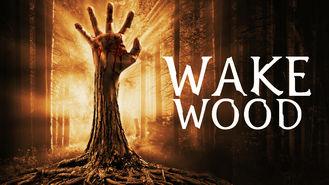 Netflix box art for Wake Wood