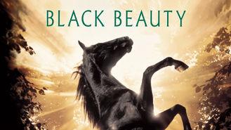 Netflix box art for Black Beauty