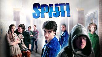 Netflix box art for Spijt