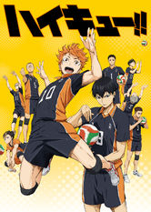 Haikyu!! Netflix IN (India)