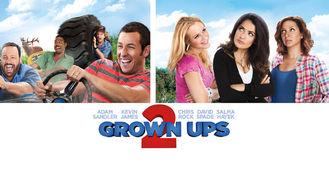 Netflix box art for Grown Ups 2