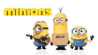 Netflix box art for Minions
